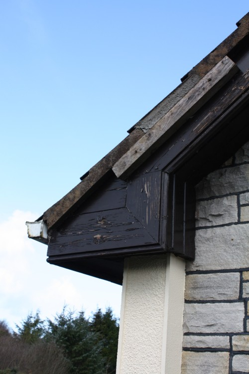 Box gutter eaves