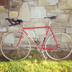 Ken Bird bike